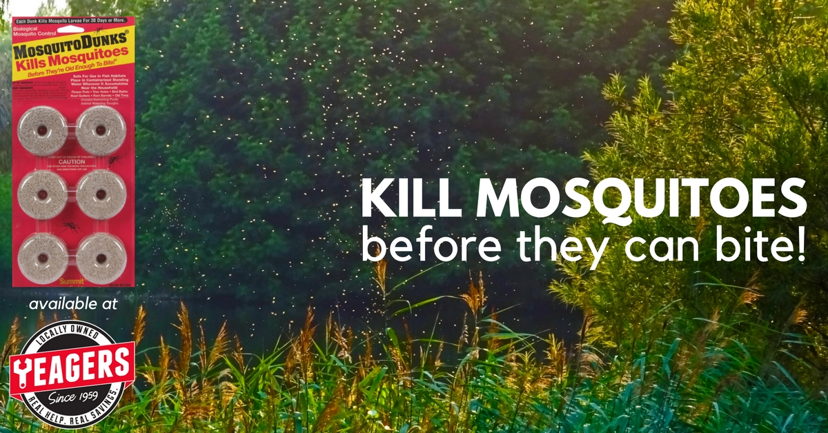 Kill Mosquitoes Before They Can Bite!